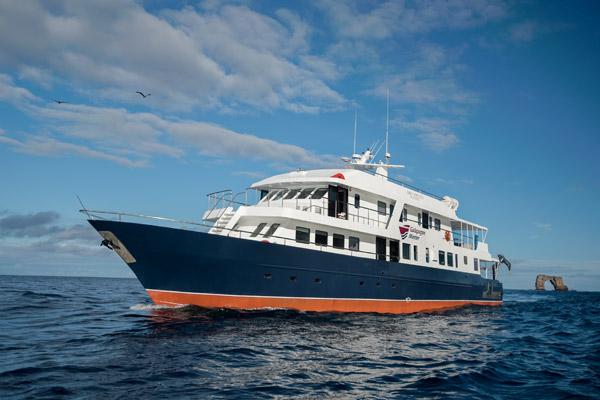 Dive Specials Galapagos