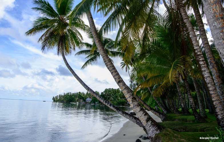 Truk Lagoon beach
