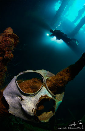 WWII remains inside a wreck in Truk Lagoon